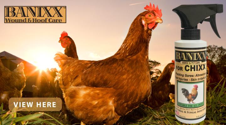New at JACKS - Banixx for Chixx