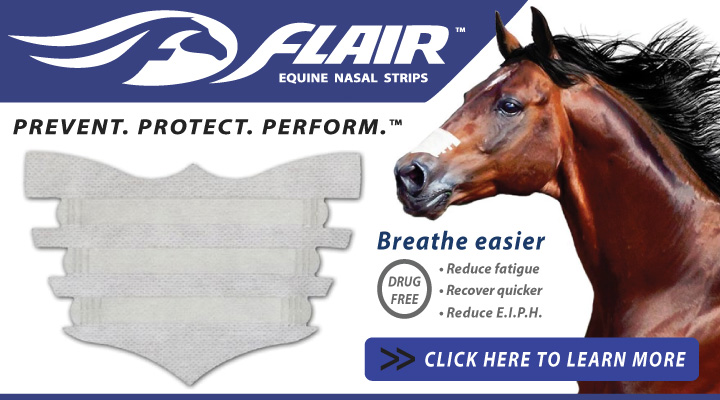 FLAIR Equine Nasal Strips - Reduce Fatigue