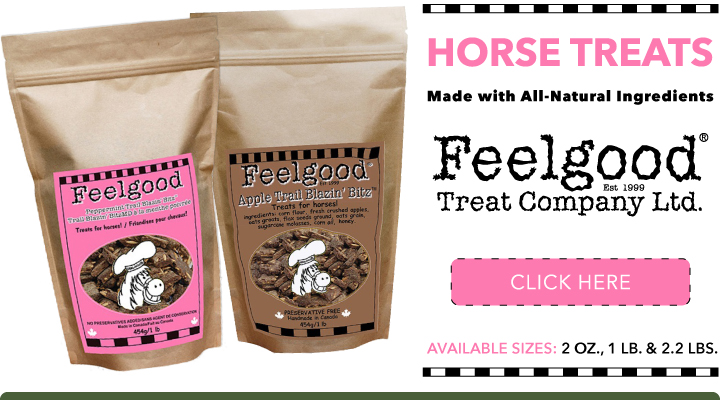 Shop Feelgood Horse Treats