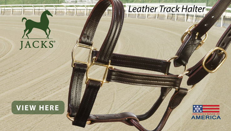 New Leather Track Halter from JACKS