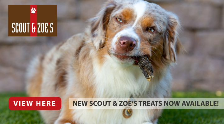 New Scout and Zoes treats Now Available