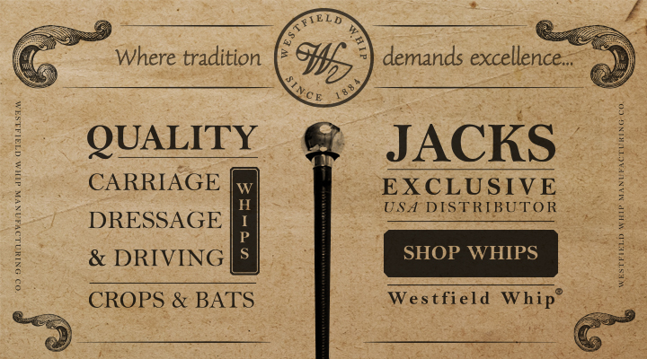 Shop Westfield Whips, Crops, and Bats