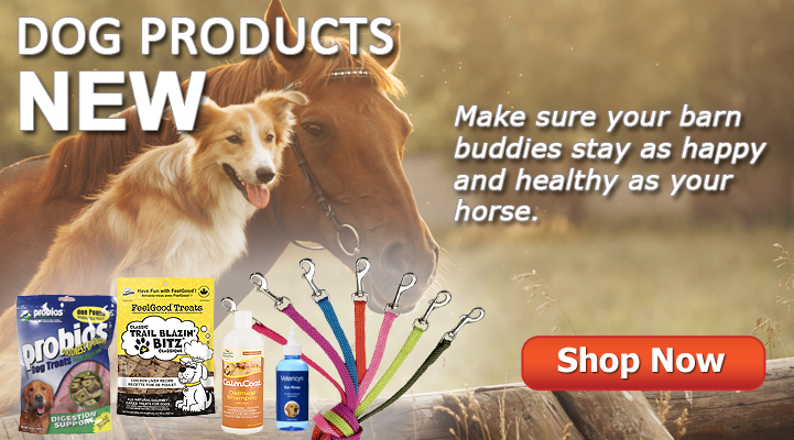 Shop Jacks Inc. now for Dog Products!