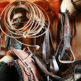 Saddle & Tack