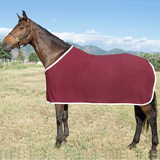 Stable & Dress Sheets