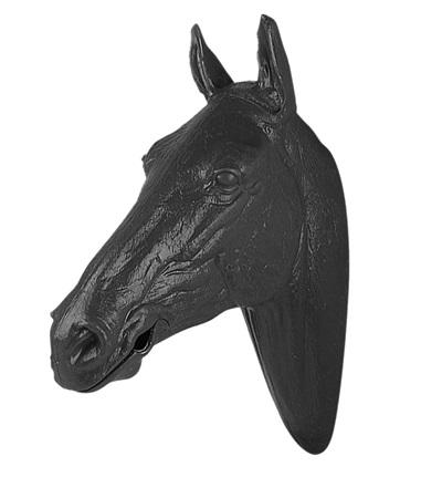 Display Horse Head