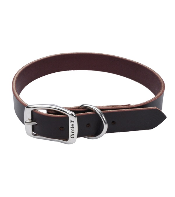 Circle T® Latigo Leather Town Dog Collar Flat 3/4""