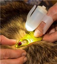 TickSee™ Tick Removal Kit