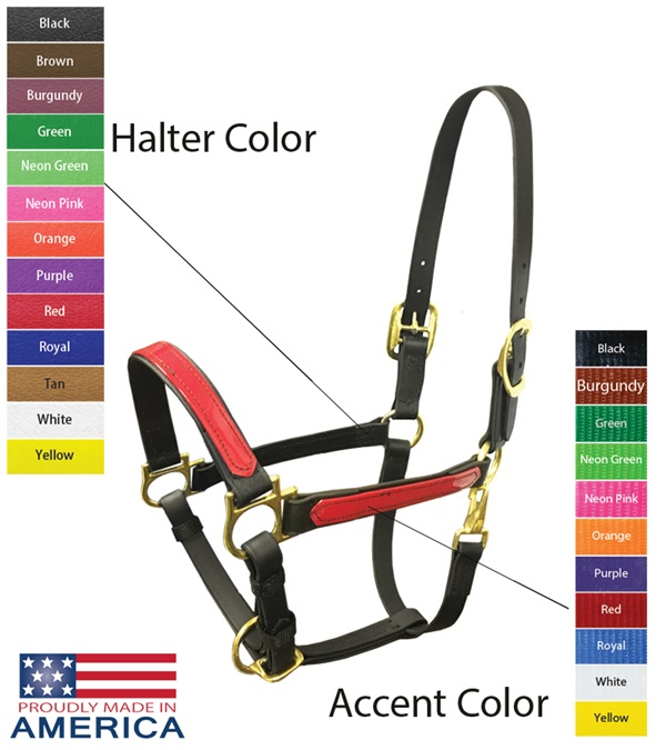 """Feather-Weight® Beta 1"""" Two-Tone Double Buckle Adjustable Chin Halter"""