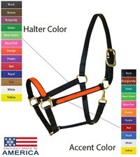 """Feather-Weight® Beta 1"""" Two-Tone Track Halter"""