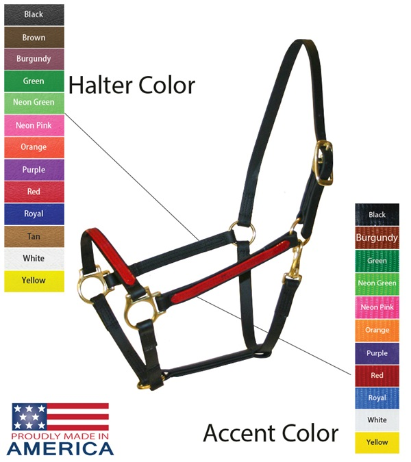 """Feather-Weight® Beta 3/4"""" Two-Tone Track Halter"""