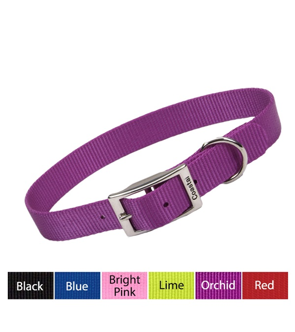 Coastal® Single-Ply Nylon Dog Collar 1""