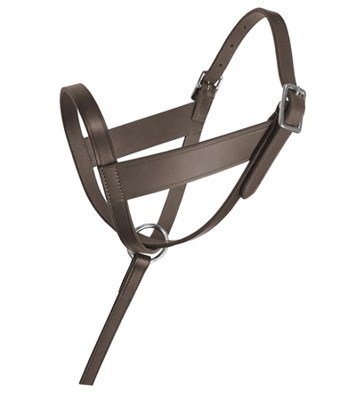 Lexington Leather Foal Halter