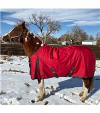 Atlas Turnout Blanket 600 Denier with 300gm Lining