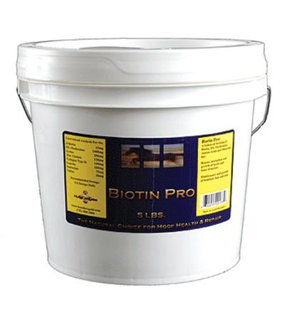 Biotin Pro 5 lbs.