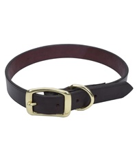 Coastal® Latigo Leather Town Dog Collar with Solid Brass Hardware 1""