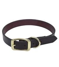"Coastal® Latigo Leather Town Dog Collar with Solid Brass Hardware 1"""