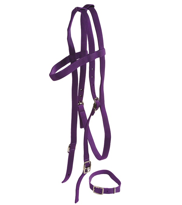 Thoroughbred Race Bridle