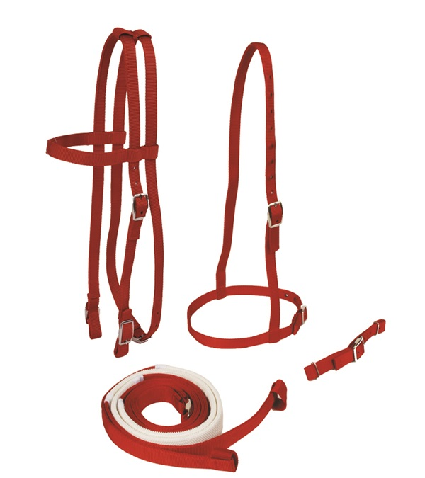 Race Bridle Set