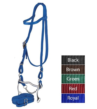 Valhoma Halter-Bridle Combination