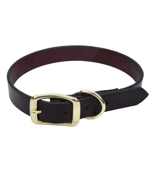 "Coastal® Latigo Leather Town Dog Collar with Solid Brass Hardware 5/8"""