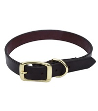 Coastal® Latigo Leather Town Dog Collar with Solid Brass Hardware 5/8""