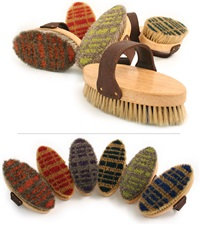 Desert Equestrian Legends™ Plaid Bristle Brush 7-1/2""