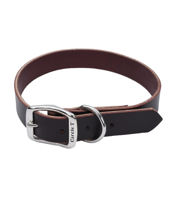 Circle T® Latigo Leather Town Dog Collar Flat 5/8""