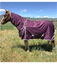 Boreas Purple Turnout Blanket 1200 Denier with 260gm Lining & Reflective Stripes