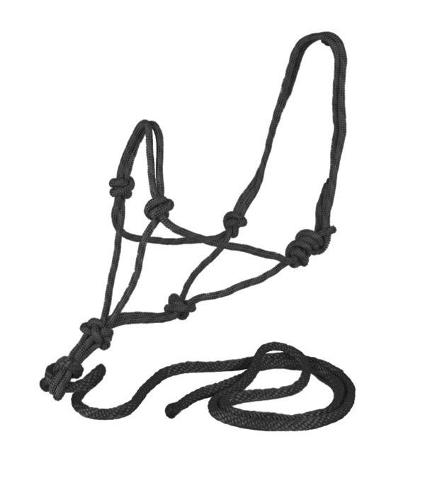 Rope Halter with Rope Lead