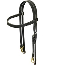 Beta Training Headstall