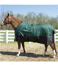 Turnout Rug (600 Denier)