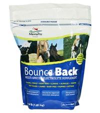 Bounce Back® 4 lbs.