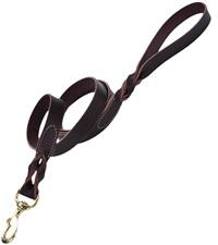"Coastal® Latigo Leather Twist Dog Leash with Solid Brass 1"""