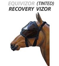 Equivizor™ Tinted Recovery Vizor