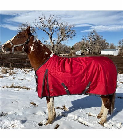 Atlas Turnout Blanket 600 Denier with 180gm Lining