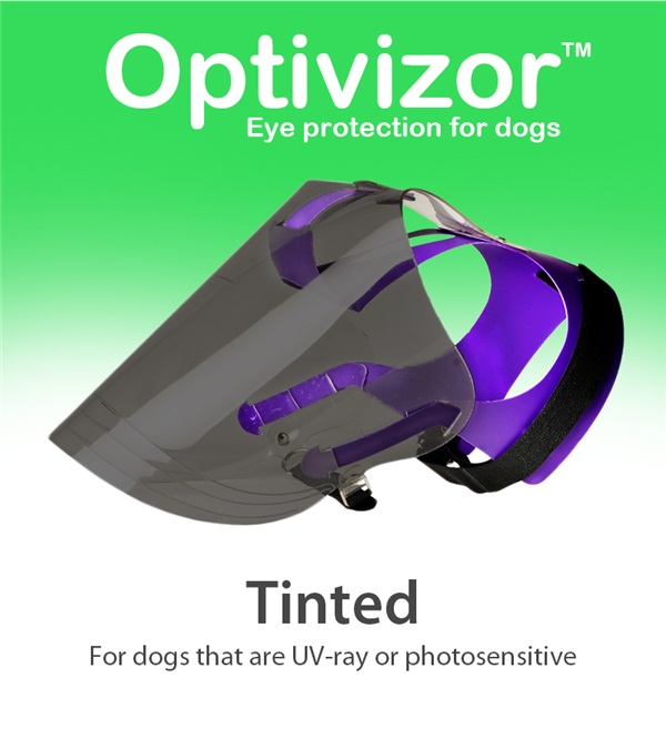 Tinted Optivizor™ Regular Snout