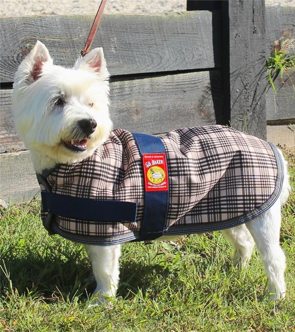 5/A Baker® Dog Blanket