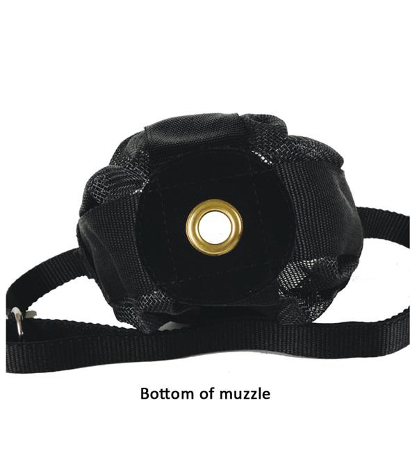 Foal/Mini Muzzle